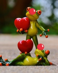 frogs-hearts